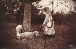 Shepherdess Under a Tree, with Two Sheep